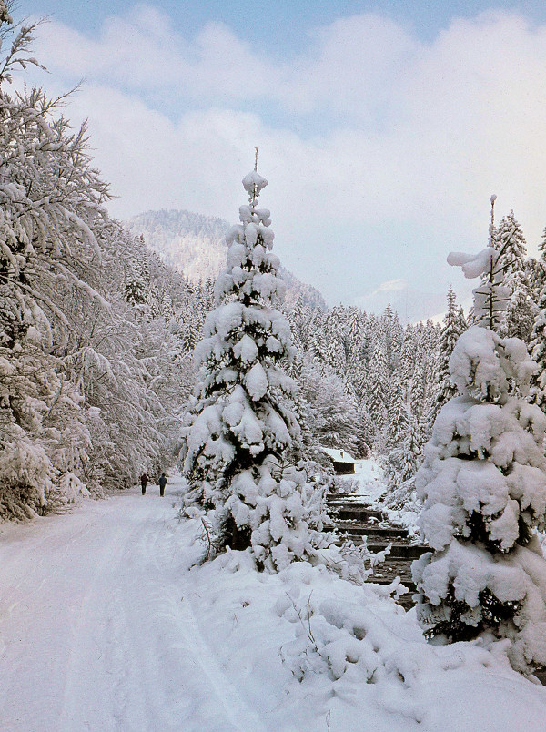 Auf der Hüttn im Winter