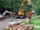 Holzer  auf der Hütt\'n